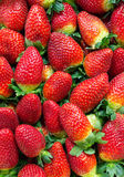 Background of ripe strawberries Royalty Free Stock Image
