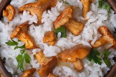 Background risotto with chanterelle mushrooms Royalty Free Stock Photo
