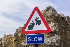 Background road sign slow with the image of animals - rabbits in Gibraltar. Background road sign slow with the image of wild animals - rabbits in Gibraltar stock photo