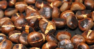 Background of roasted chestnuts just grilled roasted for sale Royalty Free Stock Images