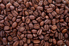 Background of roasted coffee beans Royalty Free Stock Photography