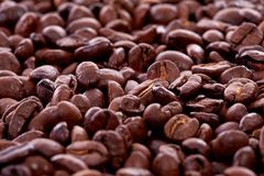 Background of roasted coffee beans Royalty Free Stock Image