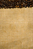 Background of the roasted coffee beans and burlap Stock Image