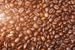 Background of Roasted Coffee Beans. Light Effect Used. Royalty Free Stock Photo
