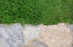 Background of rock on grass. Background with rock on grass in the garden walk Royalty Free Stock Image