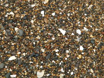 Background of rocks and shells Stock Photo