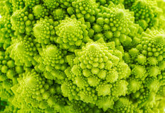 Background of Romanesco spiral broccoli. Beautiful closeup background of Romanesco spiral broccoli Royalty Free Stock Photos