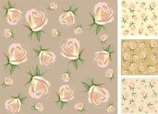 Background.  Rose. Royalty Free Stock Image