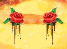 background rose Στοκ εικόνες με δικαίωμα ελεύθερης χρήσης