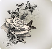 Background with rose and butterflies flying. Vecto. R illustration Stock Photo