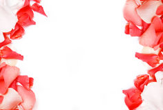 Background of rose petals Royalty Free Stock Image