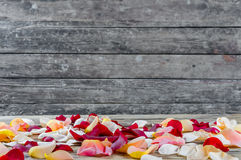 Background with rose petals Stock Image