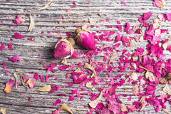 Background with rose petals and two dried flowers Royalty Free Stock Images