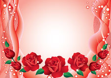 Background with roses. Royalty Free Stock Photography
