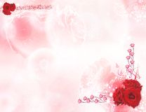 Background with roses-2. A tender background with barely visible roses and drops of dew and bright roses is in corners Royalty Free Stock Photography