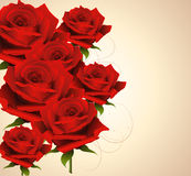 Background with roses Royalty Free Stock Image
