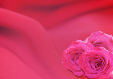 Background with roses. Bouquet of roses on pink silk Stock Photo