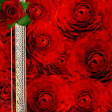 Background with roses for the cover des Royalty Free Stock Photos