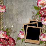 Background with roses and frames Stock Images