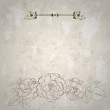 Background with roses. Retro background with spots and roses in light brown colors Royalty Free Stock Photos