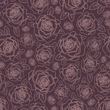 Background of roses Stock Photography