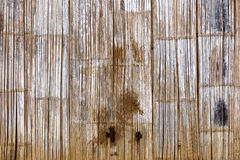 Rotten bamboo background Royalty Free Stock Images