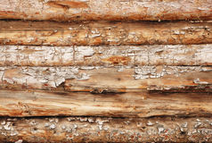 Background from round logs Stock Image