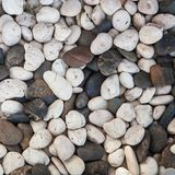 Background with round peeble stones Stock Images