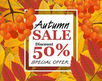 Background with rowan, berries, leaves, and sign autumn sale  Stock Photography