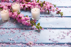 Background  with sakura  pink flowers  and candles on blue woode Stock Photo