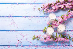 Background  with sakura  pink flowers  and candles on blue woode Stock Photos