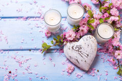 Background  with sakura  pink flowers, decorative heart  and can Stock Photos