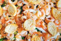 Background of salad with shrimp and croutons. Background of delicious salad with shrimp and croutons with greens Stock Photography