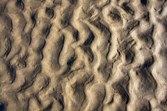 Background sand. Beach ripple pattern in sea sand created when the tide went out Stock Images