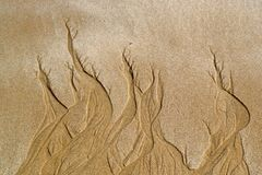 Background of Sand Flame Patterns Stock Photo