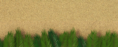 Background with sand and palm trees Royalty Free Stock Photography