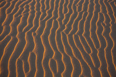 Background sand pattern in the desert at sunset Royalty Free Stock Images