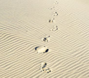 Background of sand ripples at the beach with prints of feet Royalty Free Stock Photography