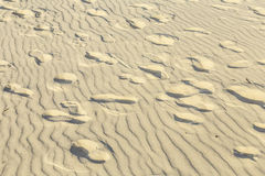 Background of sand ripples at the beach with prints of feet Stock Photos
