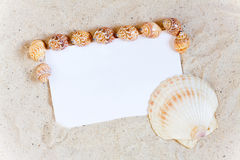Background with sand and seashells around a blank white Paper Stock Images
