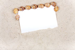 Background with sand and seashells around a blank white Paper Stock Image