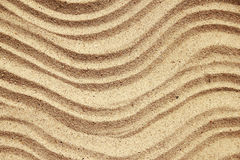 Background of sand with shells on the beach Royalty Free Stock Image