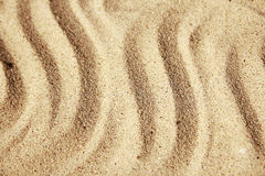 Background of sand with shells on the beach Royalty Free Stock Photos