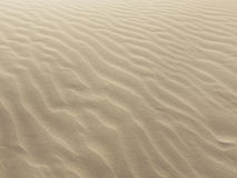 Background with sand texture Royalty Free Stock Photos
