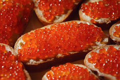 Background from sandwiches with caviar. Close-up stock photos