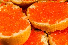 Background of the sandwiches with the red caviar. Background of the sandwiches with red caviar stock photography