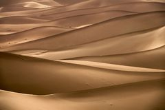 Background with of sandy dunes in desert. Background with beautiful structures of sandy dunes in the Sahara desert Royalty Free Stock Photography