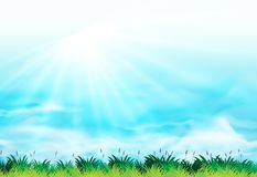 Background scene with blue sky and green grass. Illustration Stock Photos