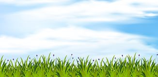 Background scene with green field at daytime. Illustration Royalty Free Stock Photos