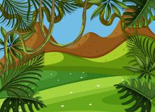 Background scene with green field and mountain. Illustration Stock Image